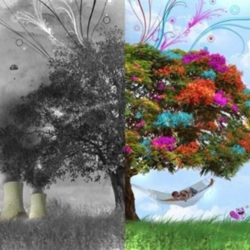 Columna de cuidados de ambiente