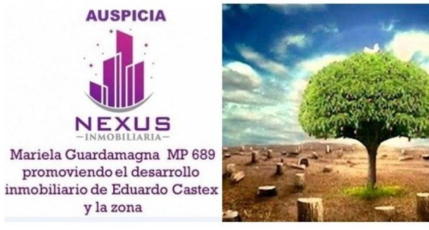 Columna de cuidados del ambiente - a cargo de la Ing Yamila Lucrecia Gerbaudo